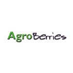 Exportadora e Inversiones Agroberries Ltda.