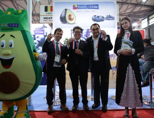 Chilean avocados and blueberries won a contest in China