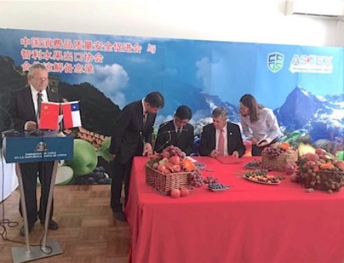 Chile and China sign a MOU