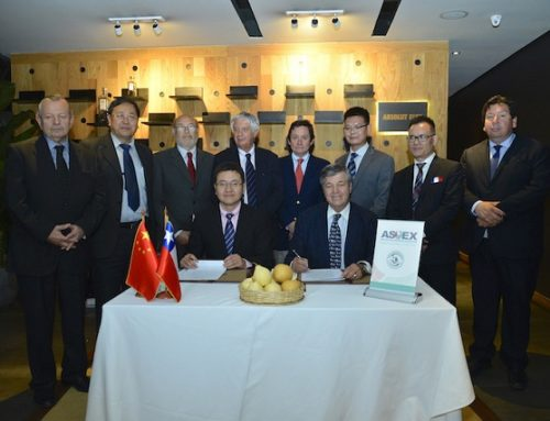 Chile and China sign an agreement to implement a pilot program that verifies the export of Chilean fruit to China