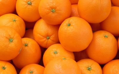 Chilean Mandarin Season Begins With First Shipments to the U.S. and Canada