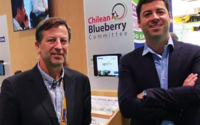 New President of Chilean Blueberry Committee